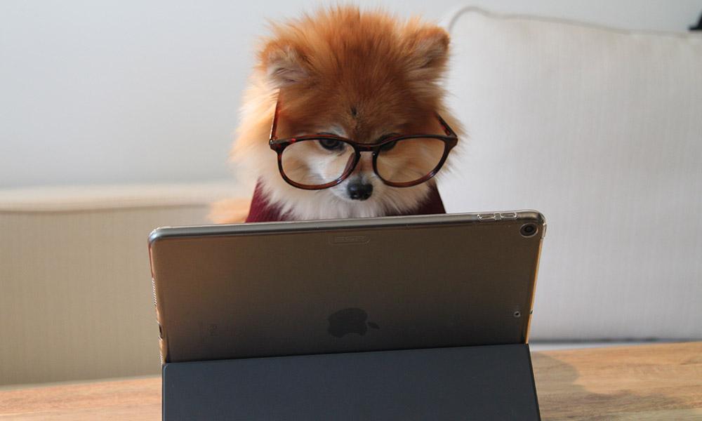CapCutをパソコンにインストールする方法を解説【動画をPCで編集しよう!】